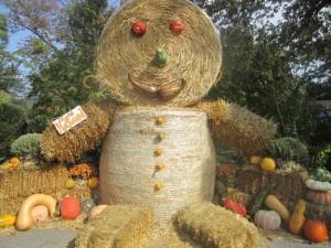 hay giant creature