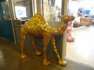 an artful camel