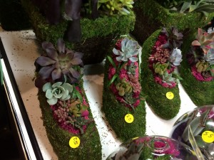 plant shoes for sale