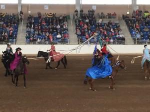 horse exhibition