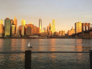 Manhattan View from Pier 1
