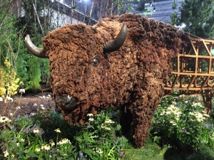 Flower Show American Buffalo statue
