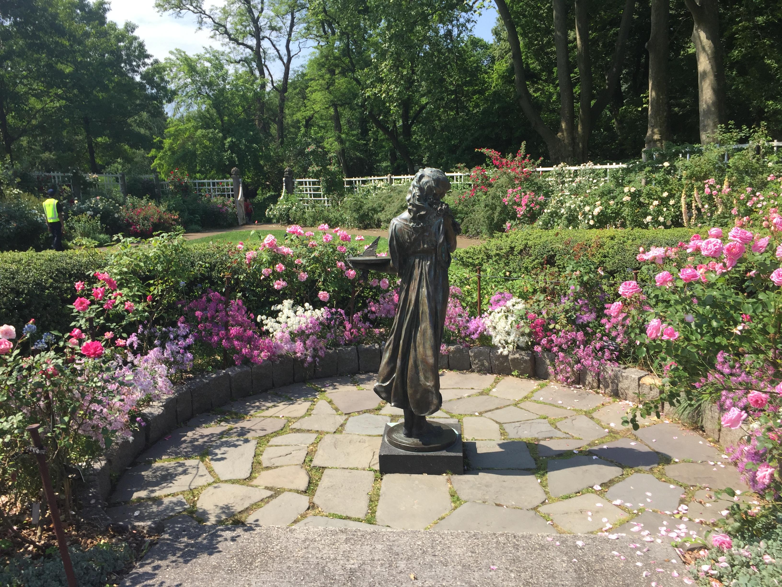 Elizabeth Kann The Brooklyn Botanic Gardens